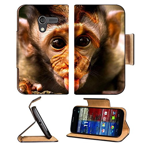 Baby Monkey Baboons Wildlife Zoo Motorola Moto X Flip Case Stand Magnetic Cover Open Ports Customized Made To Order Support Ready Premium Deluxe Pu Leather 5 7/16 Inch (138Mm) X 3 1/16 Inch (78Mm) X 9/16 Inch (14Mm) Luxlady Mobility Cover Professional Mot front-66301