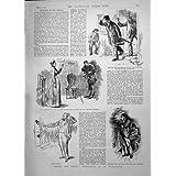 Impresión Antigua del Recaudador de impuestos de la Casa de Alojamiento Común del Empadronador de Censo de 1891...