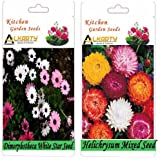 Alkarty Dimorphotheca White Star And Helichrysum Mixed Seeds Pack Of 20 (Winter)