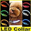 Collier harnais Corde Réglable LED Lumineux Clignotant Chien Chat Nylon vert