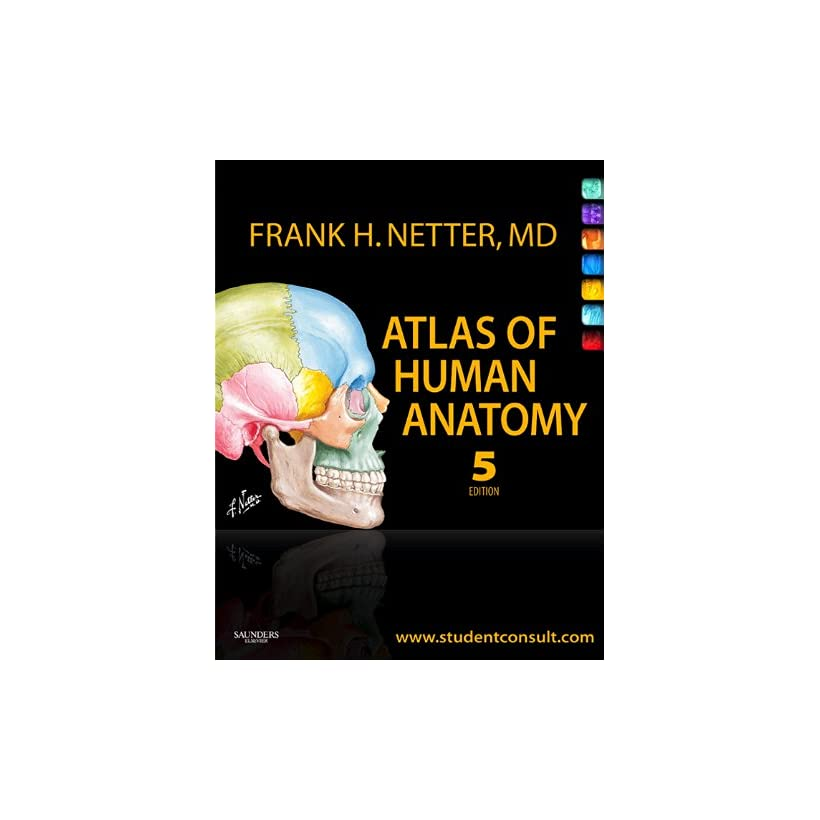 Netters Concise Atlas Of Orthopaedic Anatomy Ebook