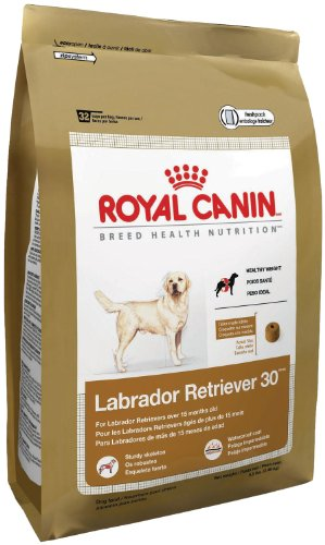 Royal Canin Dry Dog Food, Labrador Retriever 30 Formula, 30-Pound Bag