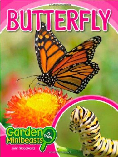 Butterfly (Garden Minibeasts Up Close)