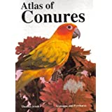 Atlas of Conures: Aratingas and Pyrrhuras