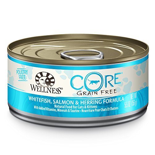 Wellness CORE Natural Canned Grain Free Wet Cat Food, Whitefish & Salmon Pate, 5.5-Ounce Can (Pack of 24) (Wellness Canned Cat Food Salmon compare prices)