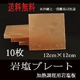 岩塩プレート 10枚 12cm×12cm 岩塩板  焼肉 バーベキュー 刺身