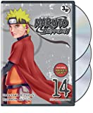 DVD - Naruto Shippuden: Set 14