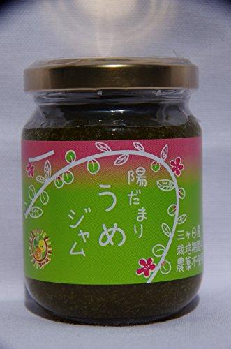 plum-jam-100g-minamidakaume-ome-confiture-trois-mois-nissan