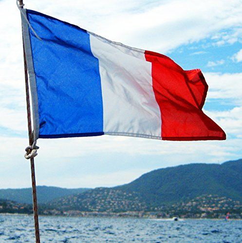 3-x-5-feet-polyester-flag-of-france-french-fr