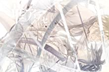 華アワセ 姫空木編 絢-アヤ- (B's-LOG COLLECTION)