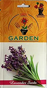 Gate Garden Lavender Herb Seeds by Gate Garden