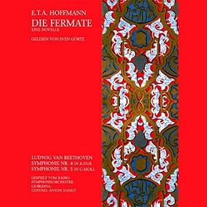 Die Fermate. Eine Novelle Hörbuch