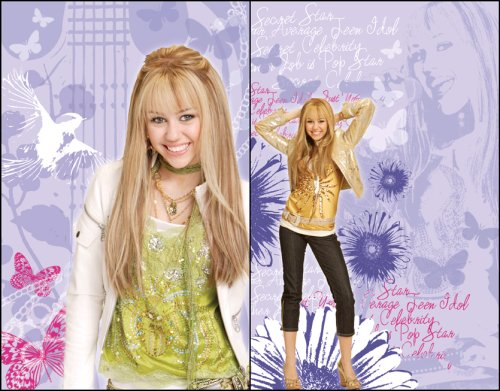 Blue Mountain Wallcoverings 31720503 Hannah Montana 2-Piece Wall Art