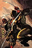 img - for Wolverine vs. Deadpool book / textbook / text book