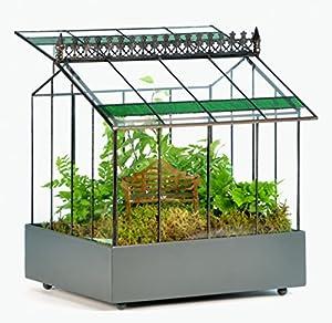 H potter glass plant terrarium indoor garden planter for Indoor gardening amazon