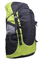 Zwart Black and Green 32 Ltrs Free Size Backpack / Rucksack