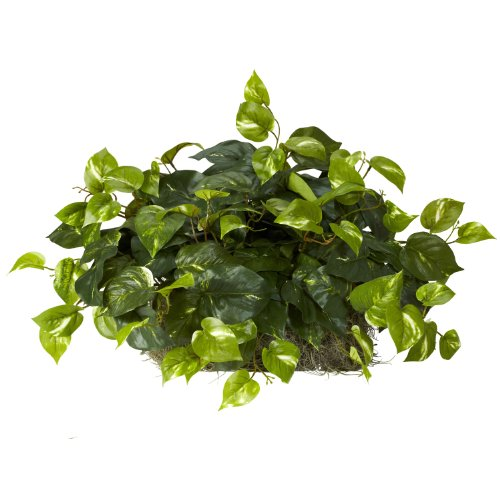 Nearly Natural 6708 Pothos Ledge Set on Foam