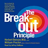 img - for The Breakout Principle: Maximize Creativity, Athletic Performance, Productivity and Personal Well-Being book / textbook / text book
