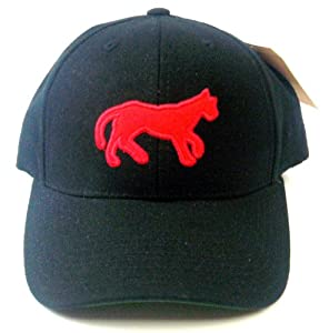Detroit Tigers American Needle Cooperstown 500 Retro 1901 Leather Backstrap Cap by American Needle
