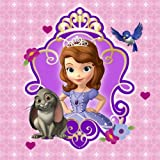 Disney Junior Sofia the First Beverage Napkins (16)