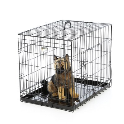 Cheap Extra Large Dog Crates