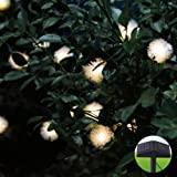 Innoo Tech Solar Powered 80 LED String Lights Garden Outdoor Wedding Party with Chuzzle Ball Style(Warm White)