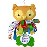 Taggies wHoo Loves You Teether, Owl