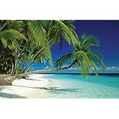 『MALDIVE BEACH/モルディブビーチ(ヤシの木)《PPC-040》』リゾートフォトポスター☆海PHOTO POSTER通販☆