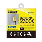 カーメイト(CARMATE) GIGA ハロゲンバルブ イエローパワー 2300K H1 55W イエロー BD135