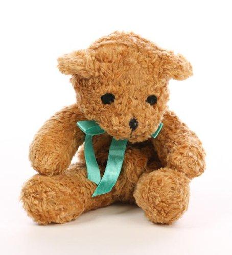Loveable Boo Boo Teddy Bear  Secret Hidden Compartment