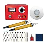 ELEOPTION 110V Crafts Gourd Wood Multifunction Pyrography Machine Heating Kit Tool with Accessories (Pointer Display) (Color: Pointer Display, Tamaño: 50W)