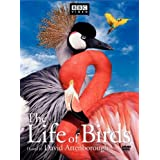 The Life of Birds [Import USA Zone 1]par David Attenborough