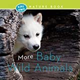 More Baby Wild Animals (Kids' Own Nature Book)
