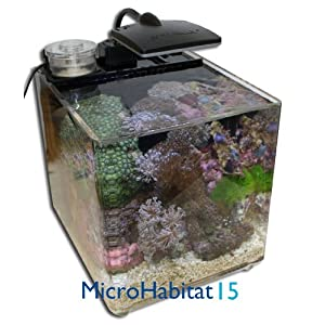 Aquarium review best aquarium review for Micro fish tank