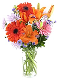 Afternoon Mimosa Mixed Bouquet of Orange Asiatic Lilies, Orange & Pink Gerberas, Purple Daisies, Purple Asters, and Lush Greens - with Vase