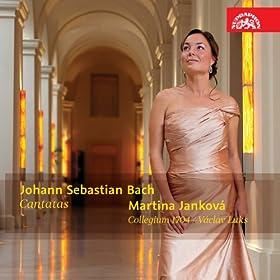 BWV Anh 5