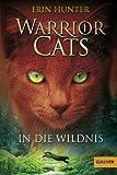 Warrior Cats. In die Wildnis Hunter: I, Band 1 (Gulliver)