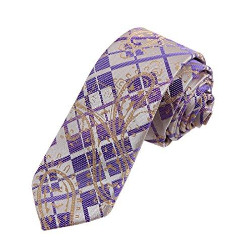 DAE7B06-Mens-Paisley-Microfiber-Skinny-Tie-Elegant-For-Dad-By-Dan-Smith