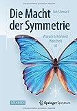 Die Macht der Symmetrie: Warum Schönheit Wahrheit ist