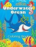 Underwater Ocean Fun Coloring Book: Fish and Sea Life! (Super Fun Coloring Books For Kids)