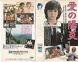 愛の陽炎 [VHS]