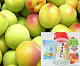お家で簡単 手作り梅酒セット【紀州南高梅・氷砂糖・ホワイトリカー・ビン】 4点セット