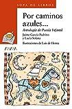 img - for Por Caminos Azules book / textbook / text book