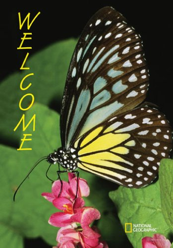 Buy National Geographic by New Creative – Butterfly Large Impressions Flag