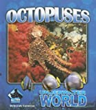 Octopuses (Underwater World)