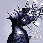 WITHIN THE VOID -LIMITED EDITION-(在庫あり。)