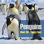 Penguins - Meet Mr. Flappy Feet: Peng...