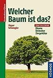 Image de Welcher Baum ist das?: Bäume, Sträucher, Ziergehölze