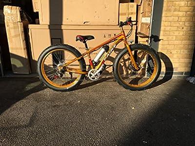 Gold Electric Mountain Bike eBike