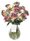 Long Stem Artificial Rose Hydrangea Bouquet (22 PCS) (Multicolor Rose)